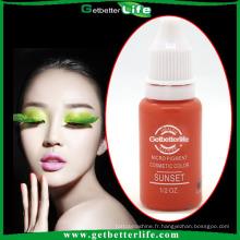 Encre de maquillage permanent micro 2015 & haute qualité tatouage 23-color Pigment/sourcils pigments pour beauté permanente