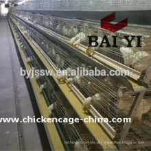 Enriquecido Colony System Poultry Chicken Cage For Farms
