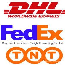 Entrega expressa econômica de DHL UPS TNT da China a Bolívia