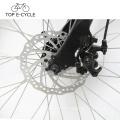 Top E Bicicleta Baixo Preço Competitivo 26 Polegada Da Bicicleta Elétrica Da Cidade Feita Na China
