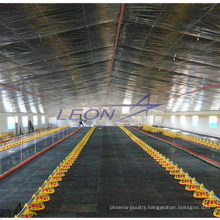 hot lowest price for broilers and chicken poultry cages feeding systems