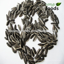 Wholesale Chia Seed With Best Quality