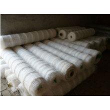 Maillage en fil de support en plastique / grain de pois de haricots et de pois (usine de Hebei)