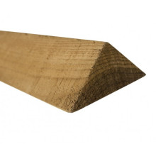 Павловния треугольник фаски и ленты