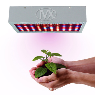 Spektrum Penuh 300w LED Grow Light