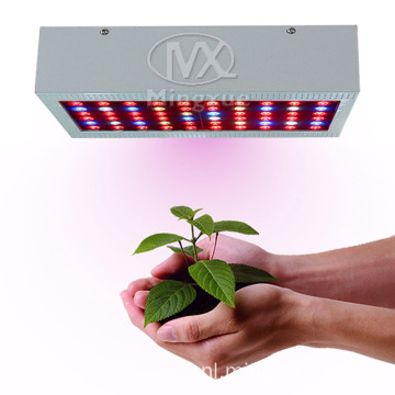 Full Spectrum 300w LED Grow Light