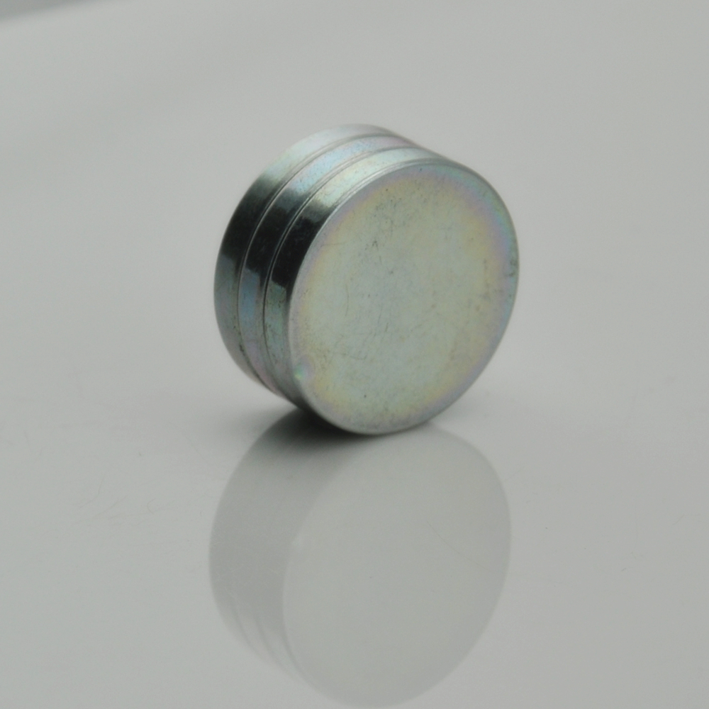 Rare earth roung magnet