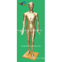 178cm Homme Acupuncture Modèle du corps humain, Manucure Acupuncture
