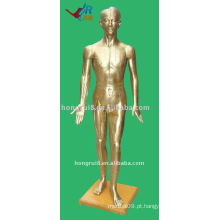 178cm Masculino Acupuntura Modelo do corpo humano, manequim de acupuntura