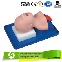 Modelo de Treinamento de Intubação de Neonato com Serviço Profissional