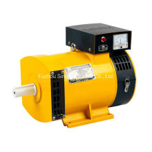 St Series 100% Copper&100%Output China 3kVA Alternator Price
