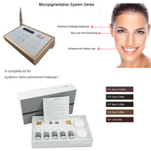 Innovatives Micropigmentierungsgerätesystem Digital Permanent Makeup Machine 0-1