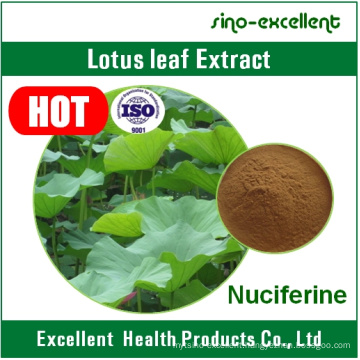 Lotus Leaf Extract for Weight Loss