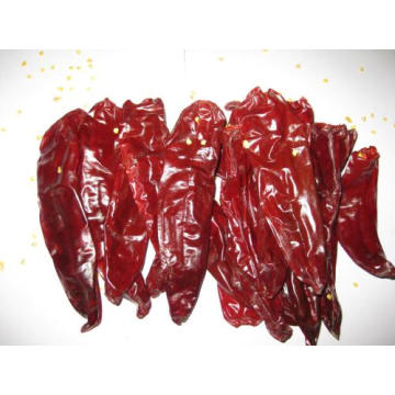 Hot Sell getrocknete Paprika Pods