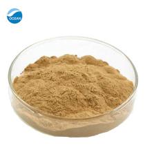 O extrato orgânico do cogumelo do volume da fábrica pulveriza a juba do leão com preço reasonble!
