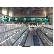 Height Adjustable Automatic Auger Broiler Chicken Feeding Equipment