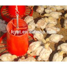 Frango aves de capoeira de frango automático preço de equipamentos