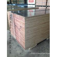 Madeira compensada da construção do álamo / vidoeiro / núcleo da madeira compensada e madeira compensada do molde (HB208)