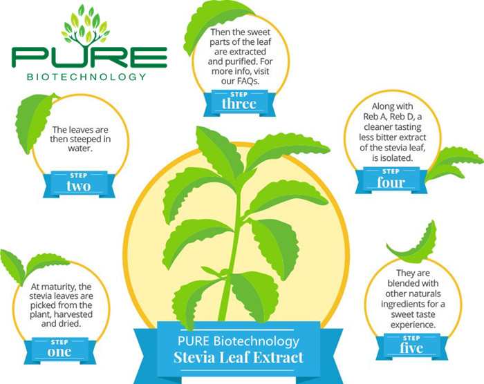 Stevia Leaves Extract Natural Sugar Substitute (5)