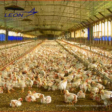 Leon series prefab chicken house whole poultry equipment for chicken farm