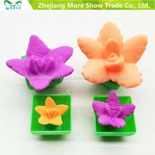 Горячая мода растет игрушки для Chindren мини Ponsai смешно растет кактус может вырасти