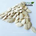 Chinese Raw Shine Skin Pumpkin Seeds In Shell