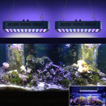 Phlizon Fish Tank Light Full Spectrum Fish Bowl