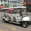 golf sightseeing bus te koop