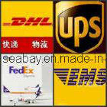Express Service From China to World