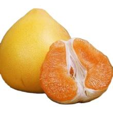 Munafacture New Season Fresh Shaddock Dilicious Grapefruit Honey Golden Pomelo