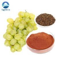 Suministro de extracto de semilla de uva de alta calidad 95% OPC