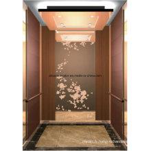 Ascenseur élévateur pour passagers Accueil Ascenseur Ascenseur Hl-X-026