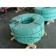 Tira / bobina de aço inoxidável do SUS 321