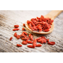 berry goji konvensional 220 wolfberry