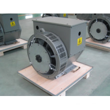 8,8 кВт / 11 кВА маломощный генератор переменного тока