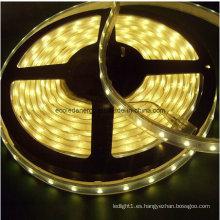 Tira de LED blanco cálido IP68 60SMD5050 14.4W / M