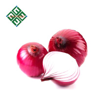 varieties China fresh onion price