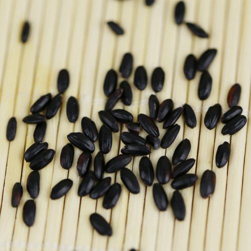High quality Food Rich Nutrition Black Rice