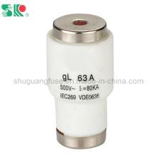Fusible de bouteille à basse tension de type à vis 63A Gl