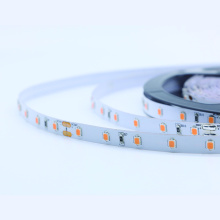 Tira DC24V 2835SMD color rosa 300led