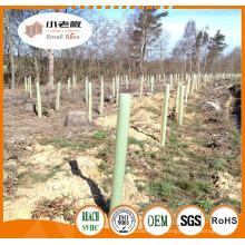 Protecteurs d'arbres en plein air / Gardes d'arbres de plantes