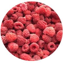 Hot selling IQF Frozen Fruit frozen raspberry