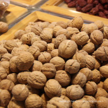 Chinese Walnuts for wholesale