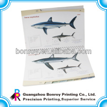 Professional printing book with photos illustration