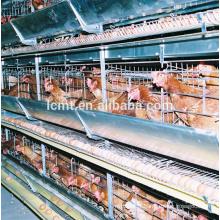 volaille H ou A cages de batterie de la couche de poulet de type