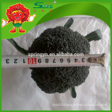 2016 new harvest High quality fresh frozen broccoli cheap price bulk sale