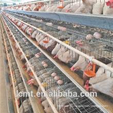 Granja avícola especial galvanizada tipo A gallinero de huevos