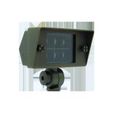 Wattage Adjustable Solid Brass Eagle Flood Light