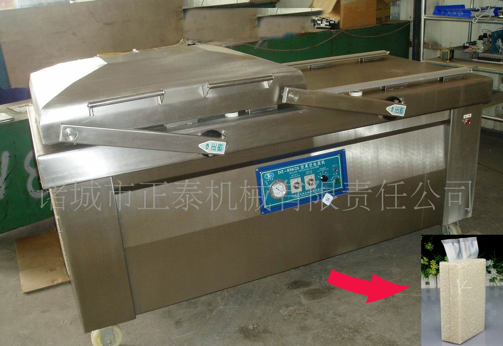 Fish DZ850/2S Vacuum Packing Machine