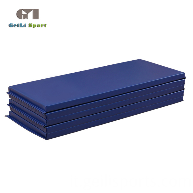 Thick Blue Gym Mat